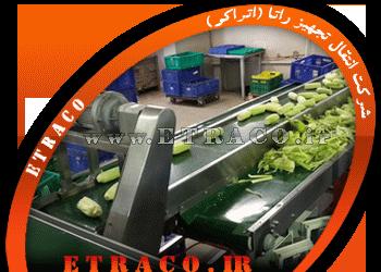 نوار نقاله محصولات کشاورزی
